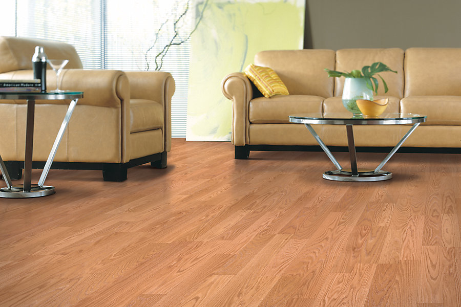 Aus Floors And More Carpet Granite Falls Mn Hardwood Flooring